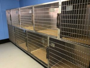 1-Sea-Cliff-Ave-Glen-Cove-animal-cages