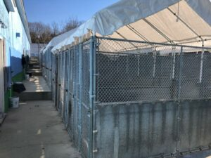 1-Sea-Cliff-Ave-Glen-Cove-outdoor-cages